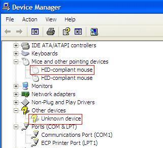 Ghost Device in Device Manager HID